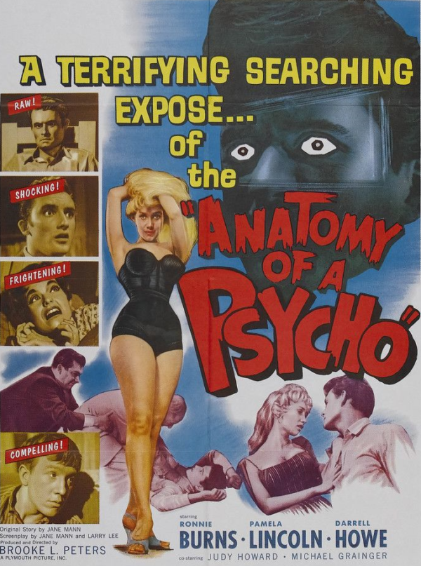 Anatomy-of-a-Psycho-Poster-600x807